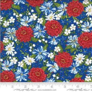 America-the-Beautiful-19982-14-Blue