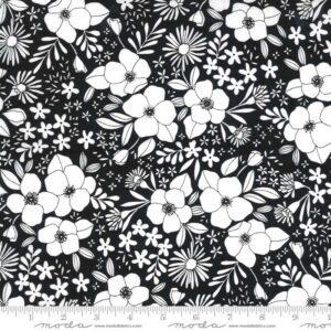 Illustrations-11503-15 Moda